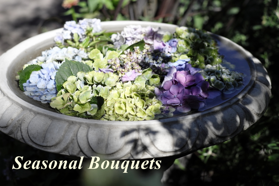 Seasonal Bouquets